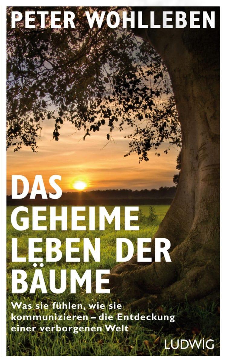 Das geheime Leben der Bäume von Peter Wohlleben