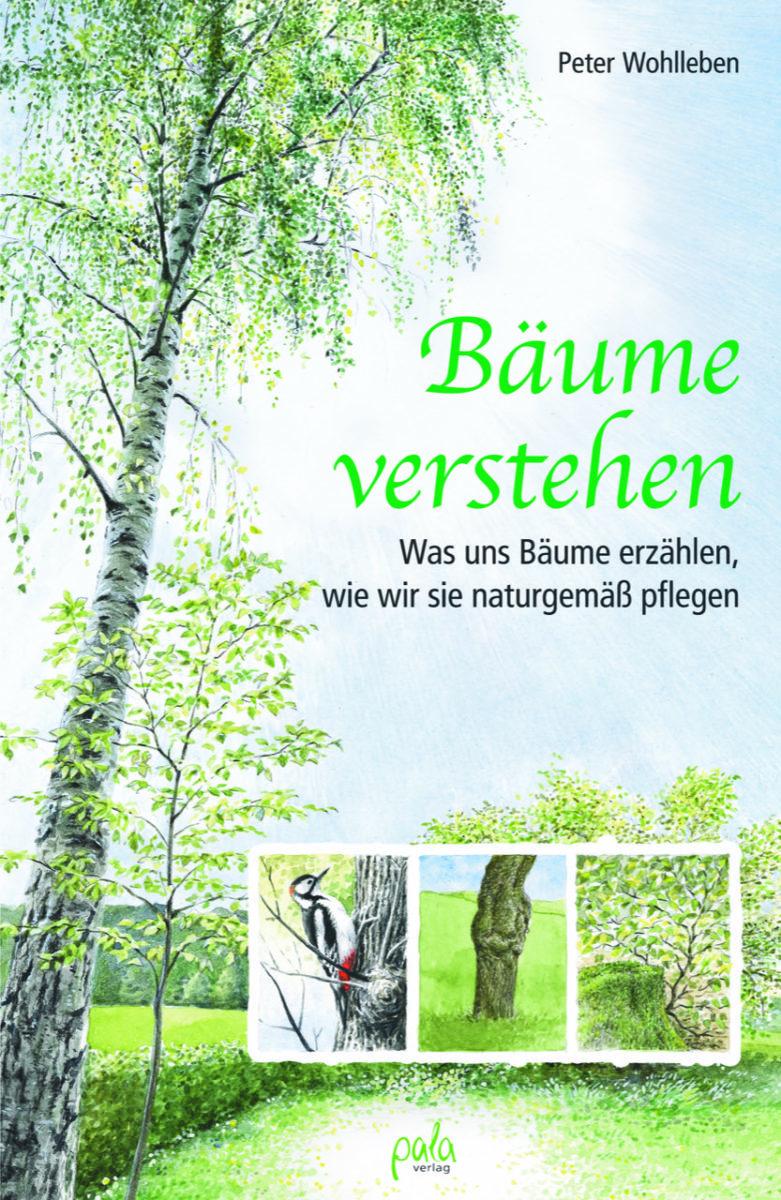 Bäume verstehen Was uns Bäume erzählen, wie wir sie naturgemäß pflegen